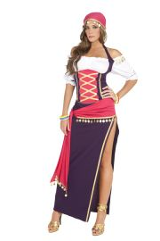 Gypsy Girl Costume (Sizes: Small)